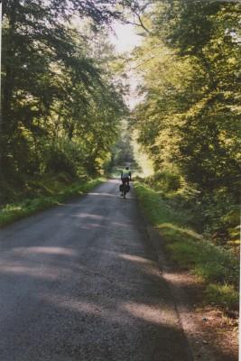 Forest riding.jpeg
