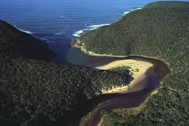 garden_route_national_park_tsitsikamma_03