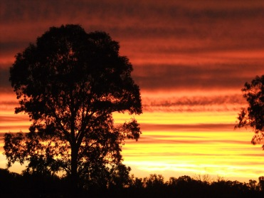The sun sets in Narrabri, north-west NSW, Australia.