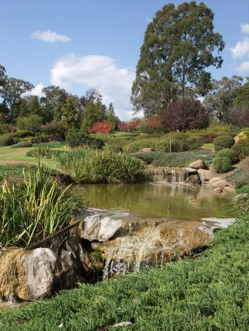 Japanese Gardens, Cowra, NSW Australia
