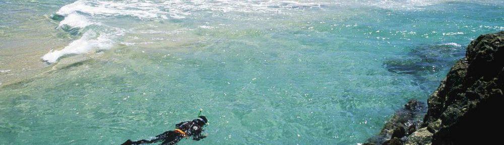 A diver at Short Point, Merimbula. Source: Merimbula Tourism