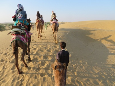 Riding camels over the sand dunes