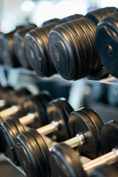 Bar bells and heavy weights lined up on shelves or racks