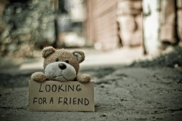 Lost teddy bear looking for a friend