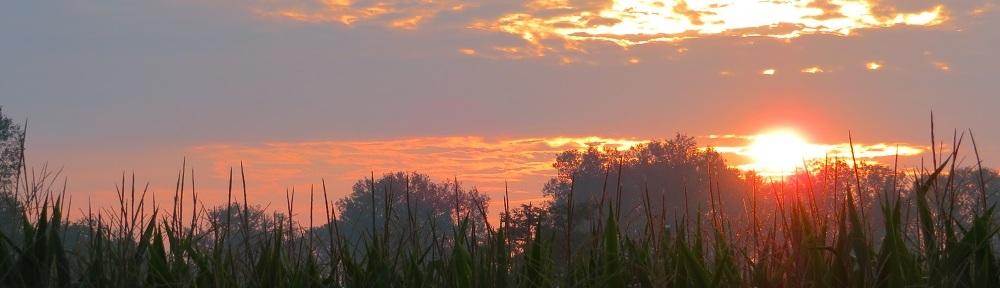 Sunrise on the Via Francigena, Italy