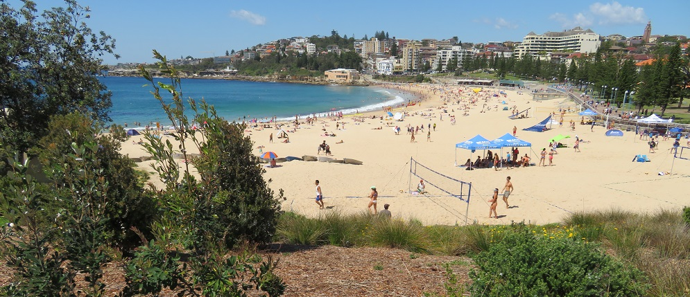 Coogee Beach scene with swimmers and volley ball players