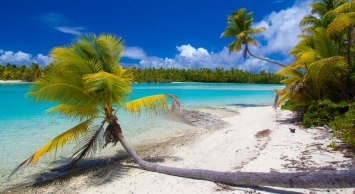 Palm trees and blue waters and white sands of the Cook Islands