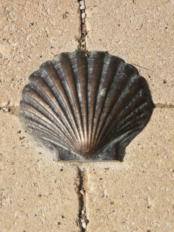 A bronze shell shows the way on the Camino Portuguese