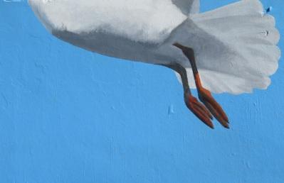Seagull street art Bondi Beach
