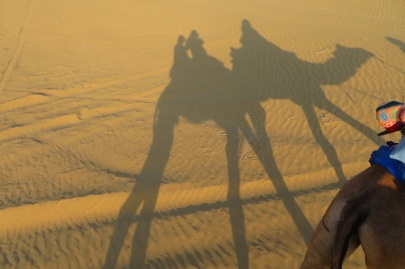A shadow of a camel on sand dunes