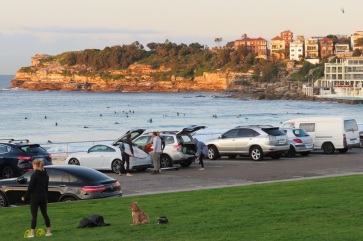 People get ready to swim and surf at Bondi Beach early in the morning.