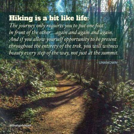 hiking philosophy quote with a forest background