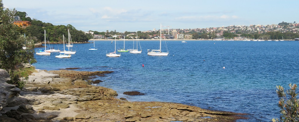 A picturesque view of boats on Rose Bay, Sydney