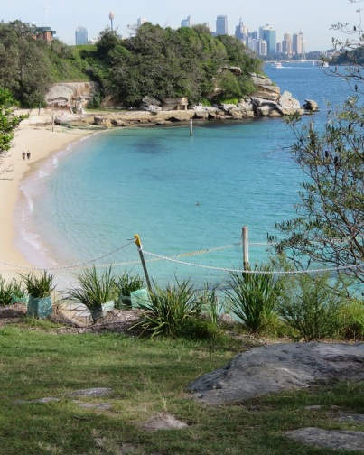 Shark beach, Sydney Harbour