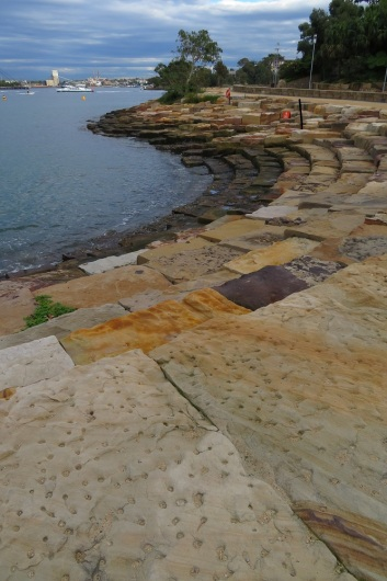 Wulugul Walk - Sydney Harbour - sandstone layers