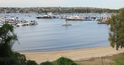Boats moored at Rose Bay