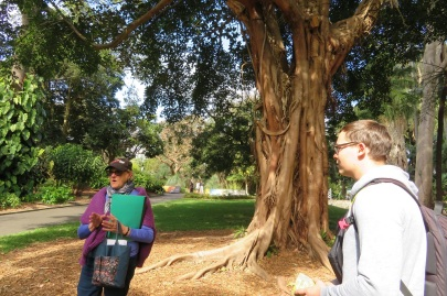 Free garden tour in the Royal Botanic Gardens Sydney