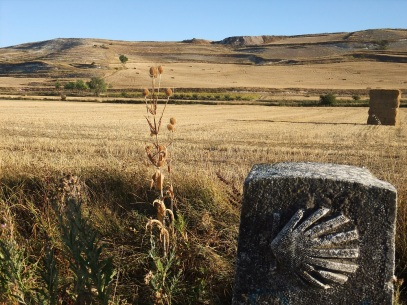 Meseta views on the Camino Frances