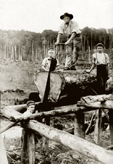 James Brown and his sons Thomas, Charles and Harry work the pitsaw