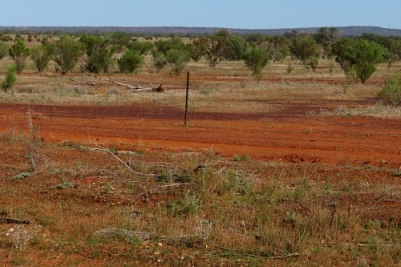 Landscape of far west Western NSW