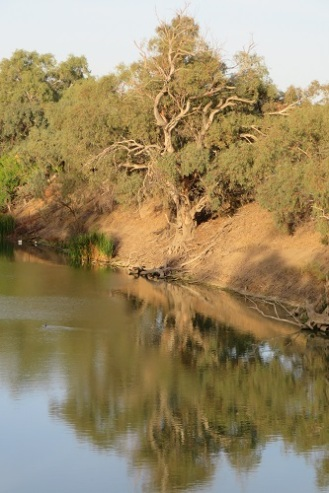 A small section of the Darling River with water