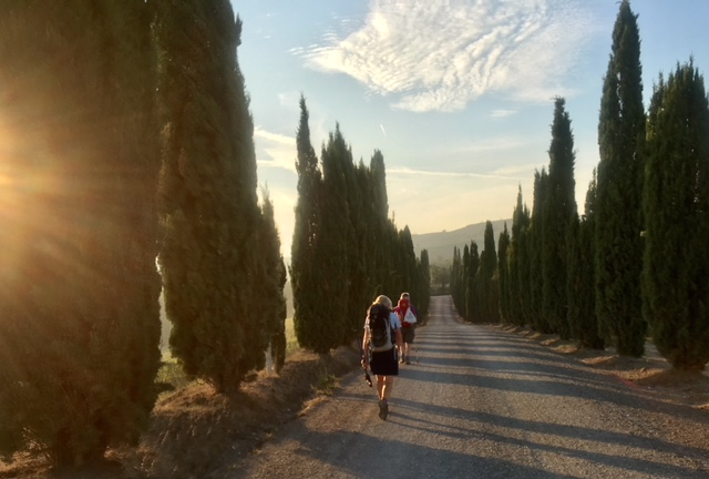 Two women down a dirt road between tall pine trees in Tuscany, Italy