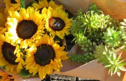 Bright yellow sunflowers at the Salamanca Markets