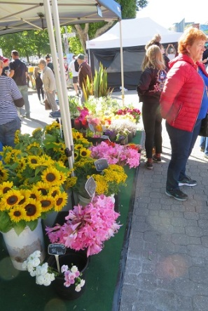 Fresh flowers at the Salamanca Market Hobart