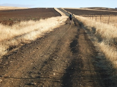 Walking through plowed paddocks on the camino via de la plata in Spain