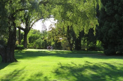 Lush green of St David's Park, Hobart