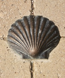 A brass shell inlaid in the footpath on the Camino Frances