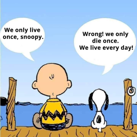Charlie Brown and Snoopy philosophy