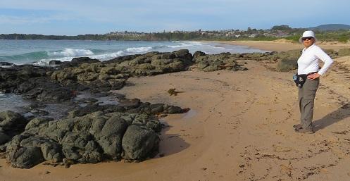 View from Kiama Coast Walk