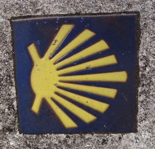 Camino shell tile