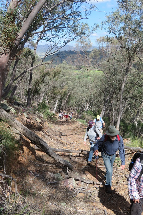 Mudgee Bushwalking Club - Mullamuddy walk