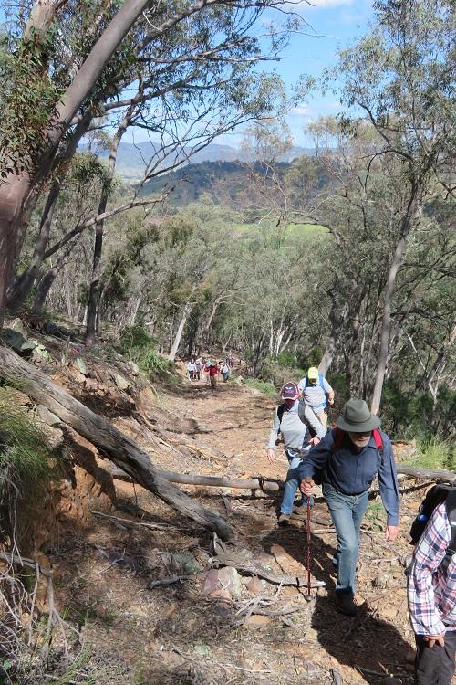 Mudgee Bushwalking Club - Mullamuddy walk