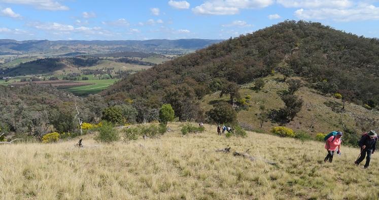 Mudgee views with Mudgee Bushwalking Club