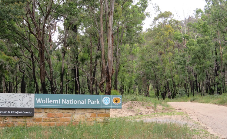 Signage for Dunns Swamp - Wollemi National Park