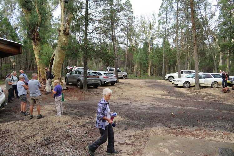 Parking area at Fern Tree Gully Reserve