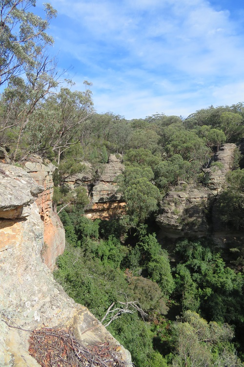 Views over Fern Tree Gully Reserve