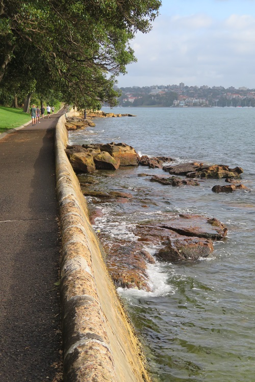 Botanic Gardens - Bondi to Manly walk