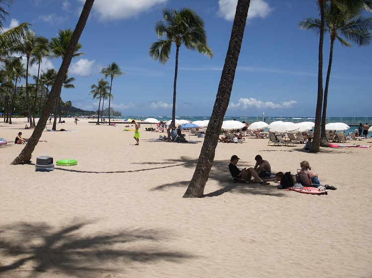 Relaxing under palm trees on Waikiki Beach, Hawaii
