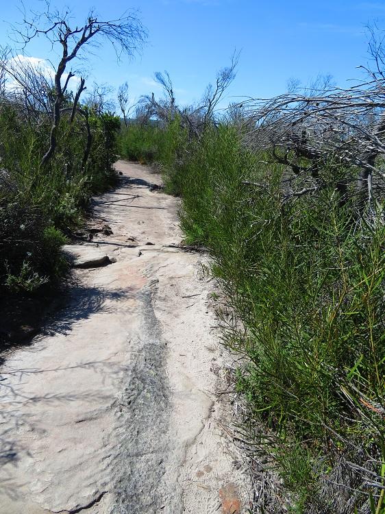 The path over Dobroyd Head