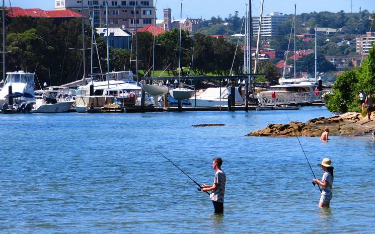 Fishing near Fairlight Beach
