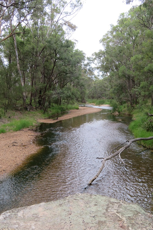 The Goulburn River on the way to The Drip, Mudgee
