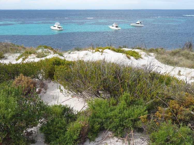 Crystal clear waters of Rottnest Island