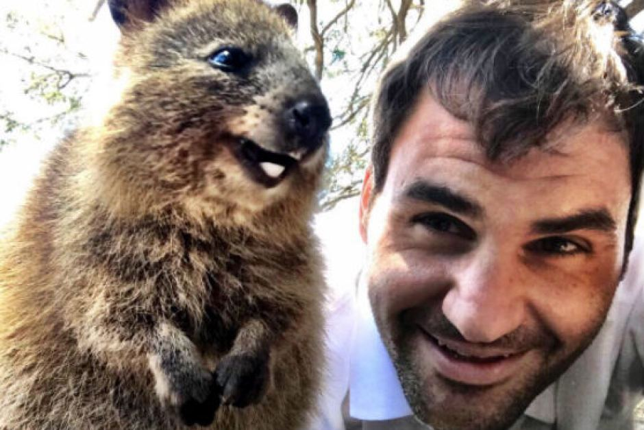 Roger Federer and his best mate, the quokka.