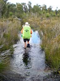 Wet feet on the Pingarup Plains. Source: inspirationoutdoors.com