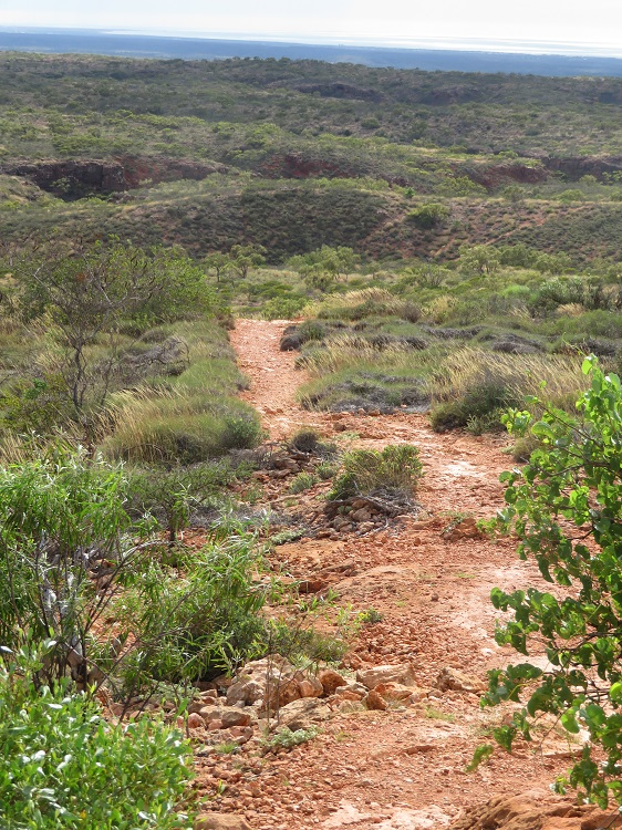 The Path to Shot Hole Canyon in Cape Range National Park