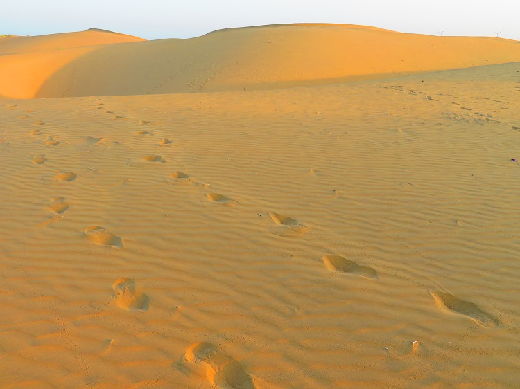 Thar Desert, Rajasthan India